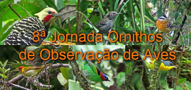 7ª Jornada Ornithos de Observação de Aves