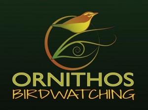 OrnithosArteVerde1p