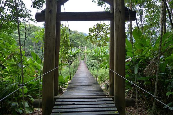 ponte